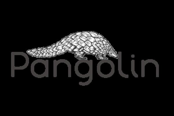 pangolin-fashion